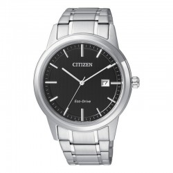 Citizen Eco Drive AW1231-58E