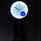 ADLER 20246O  sieninis kvarcinis laikrodis